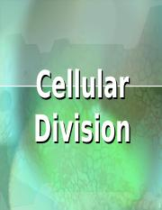 cell cycle & cell division.htm