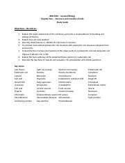 Chapter 4 - Study Guide