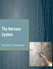 The Nervous System.pptx