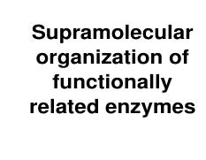 28-Supramolecular organization of functionally related enzymes ROS 2012.pdf