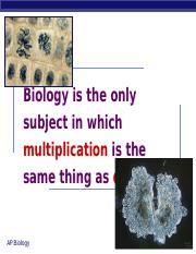 52Ch11mitosis2008print.ppt