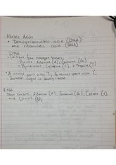 nucleic acids and cell theory notes