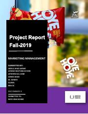 OYE HOYE Marketing Mnagement Project 2019.pdf