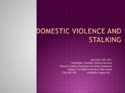 DCC Domestic Violence and Stalking with video clip