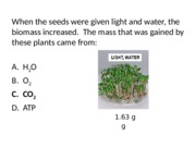 8.4 photosynthesis and respiration review clicker qs-2.pptx