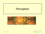 lecture 4 - perception2