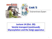 Lecture14-Unit5-Golgi&glycolsylation - 2014W LC