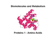 Biomolecules Lecture_1_Proteins