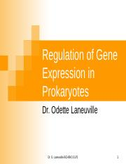 rEGULATION OF GEN EXPRESSIONS IN PROKARYOTES.ppt