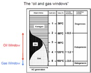 oil and gas window