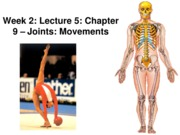 Z331 Fall 2010 Ecampus Week 2 Lecture 6 Joint Movements Posted