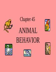AP Ch. 45--Animal Behavior.ppt