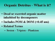 7 Detritis as a Food Source