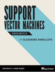 support_vector_machines_succinctly.pdf