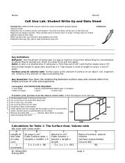 Cell Size Lab - KEY
