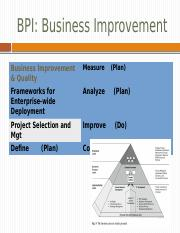 BPI+Business+Improvement+S (1)