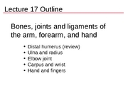 Lect17_bones_arm_part_2.notess