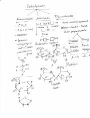 Carbohydrate notes