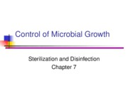 Control%20of%20Microbial%20Growth