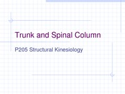 Trunk and Spinal Column Lecture Slides