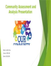Community Assessment and Analysis  Presentation (Lizetter).pptx