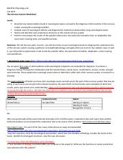 Week 7 The Nervous System Worksheet.docx