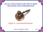 Chapter23 Legal Challenges