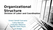 Chapter 15 - Organizational Structure