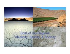 CH 10_Soils of Dry Regions_Alkalinity, Salinity, and Sodicity