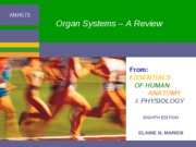L4-ANH573w10 - POSTED - Supplement - Organ Systems