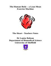 Heart-teachers-notes.doc