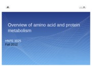 5 Overview Protein Metabolism