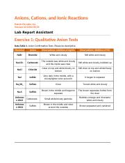 Anions, Cations, and Ionic Reactions Report.docx