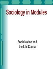 sociology 1301 A christian college in dallas, texas - course requirements for a bachelor of arts and sciences in sociology.
