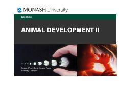 Lect 14 Animal Dev 2