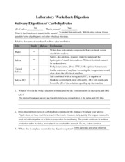 Digestion Laboratory Worksheet with Answers
