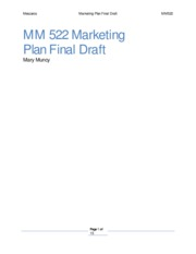 13-MM522_Marketing_Plan_-_Exemplary_Marketing_Plan_2