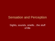 Sensation_and_Perception