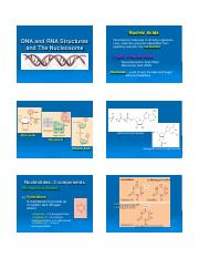 DNA_and_RNA_and_packaging_1