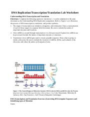 Docx 3 Dna Replication