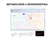 10_Bioenergetika_in_uvod_v_metabolizem