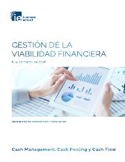 Executive Viabilidad Financiera.pdf