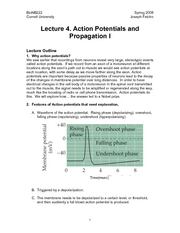 Introduction to Neurobiology - Lecture Notes 04 - Action Potential & Propagation I