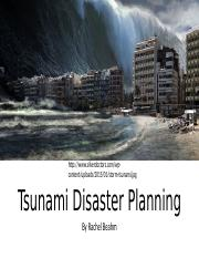 Tsunami disaster planning
