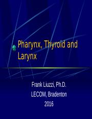 Pharynx and Larynx 2016