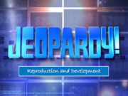 Lab 12 Jeopardy (2)