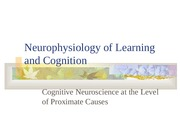 Cognitive Neurosience