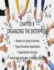Chapter 8 - Organizing the Enterprise.pptx