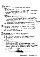 Breakdown of Korten's Thoughts Notes