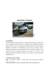 IBHL2 Business and Management - Marketing Project audi